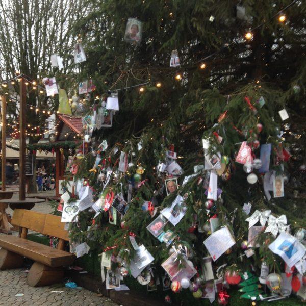 Herinneringsboom op Oirschot Winterparadijs